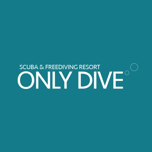 ONLY DIVE